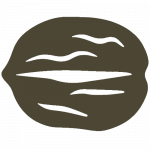 icone-noix-huilerie-vienne-86